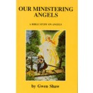 Our Ministering Angels